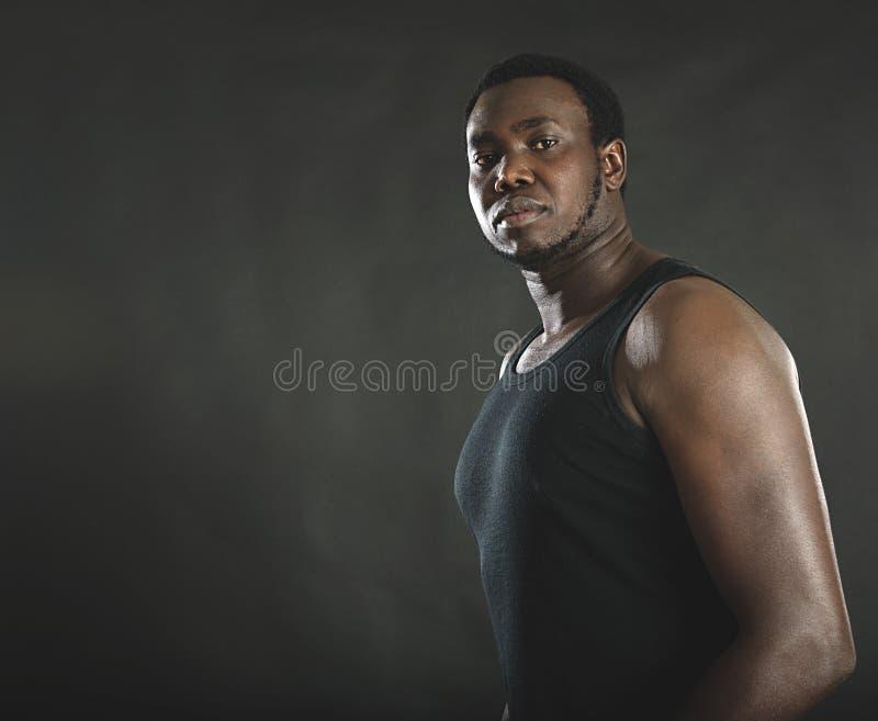 Retrato do estúdio do homem afro-americano bem-construído imagem de stock