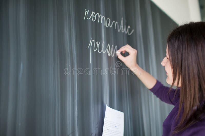 Retrato do estudante universitário em uma sala de aula fotografia de stock royalty free