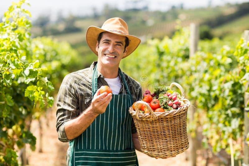 Retrato do fazendeiro feliz que guarda uma cesta dos vegetais foto de stock royalty free