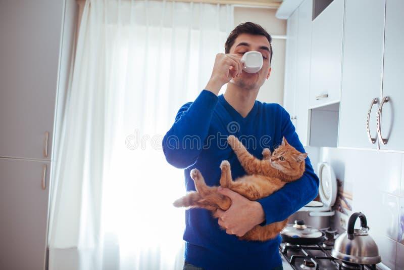 Retrato do gato consider?vel da terra arrendada do homem novo e do ch? bebendo na cozinha fotografia de stock royalty free
