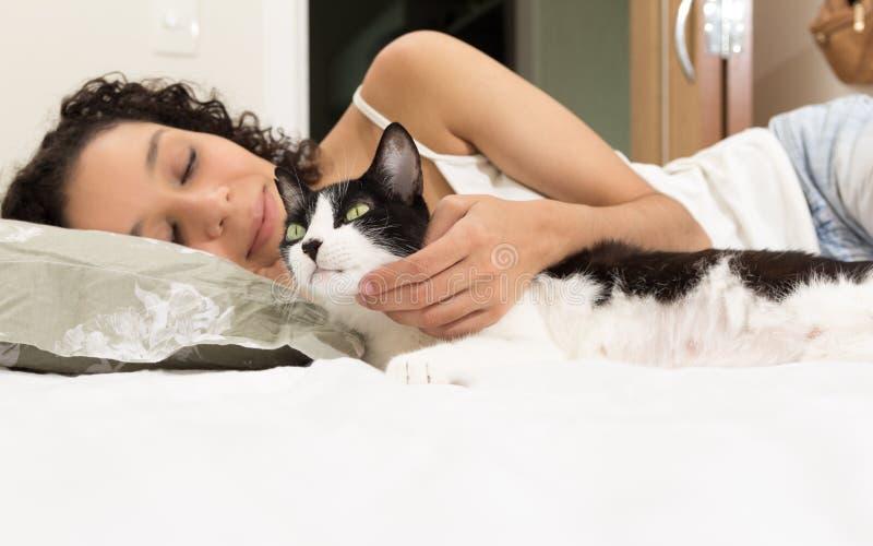 Retrato do gato preto e branco das trocas de carícias da mão da mulher Interio da sala imagens de stock