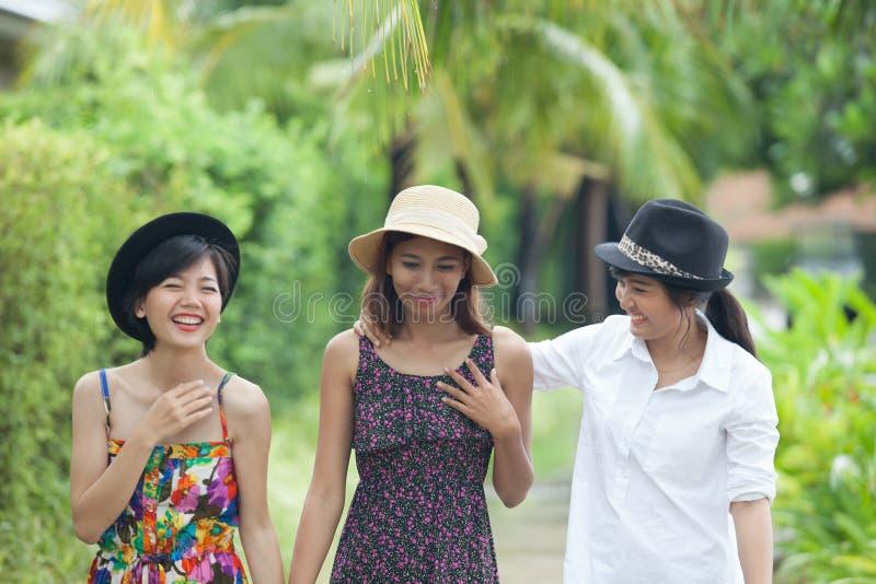 Retrato do grupo asiático do amigo da mulher que anda no parque verde e no t imagem de stock