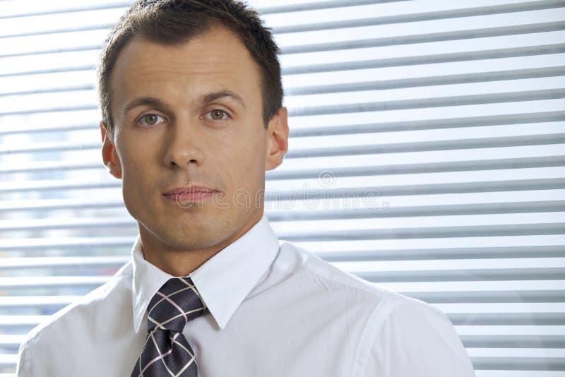 Retrato do homem de negócios novo no escritório fotografia de stock