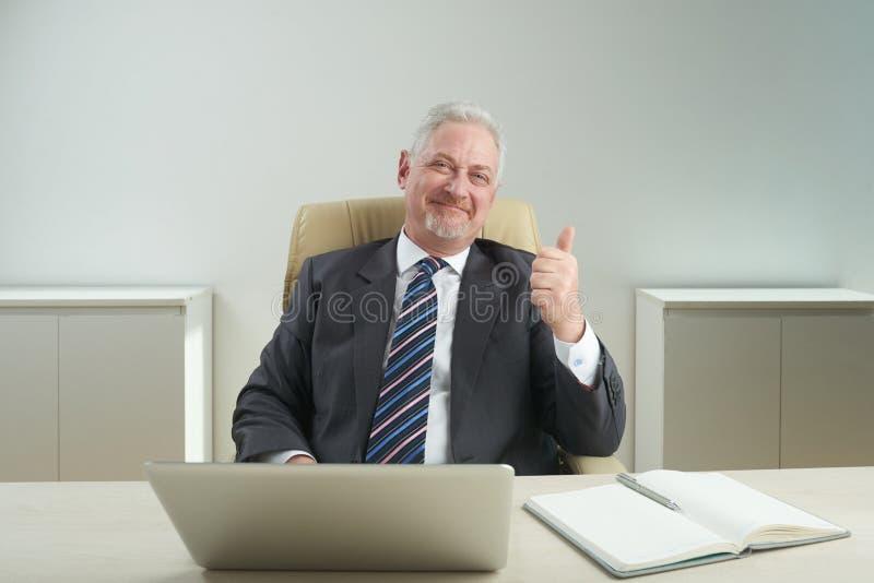 Retrato do homem de negócios sênior bem sucedido fotografia de stock royalty free
