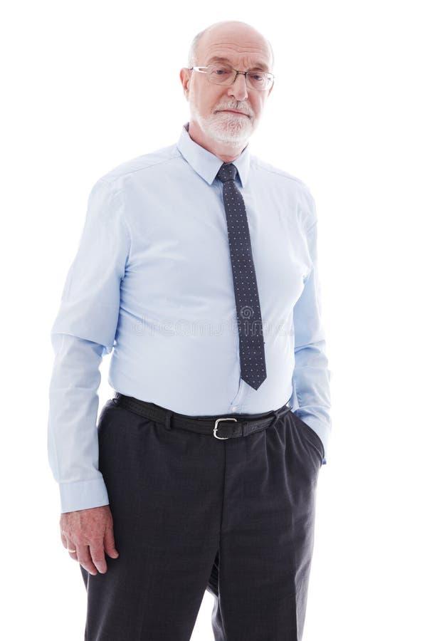 Retrato do homem de neg?cio s?nior imagens de stock royalty free