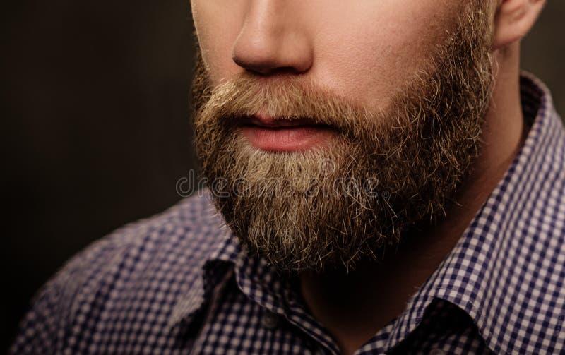 Retrato do homem farpado à moda isolado no cinza foto de stock