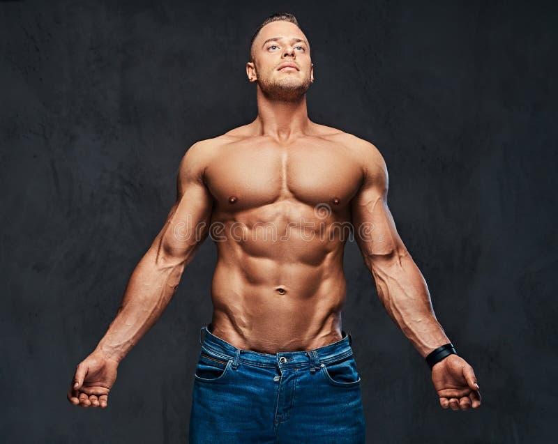 Retrato do homem muscular descamisado no calças de brim foto de stock