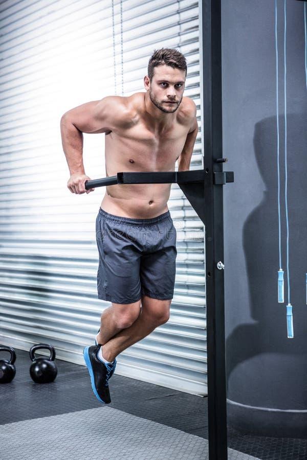 Retrato do homem muscular que exercita com barras fotografia de stock royalty free
