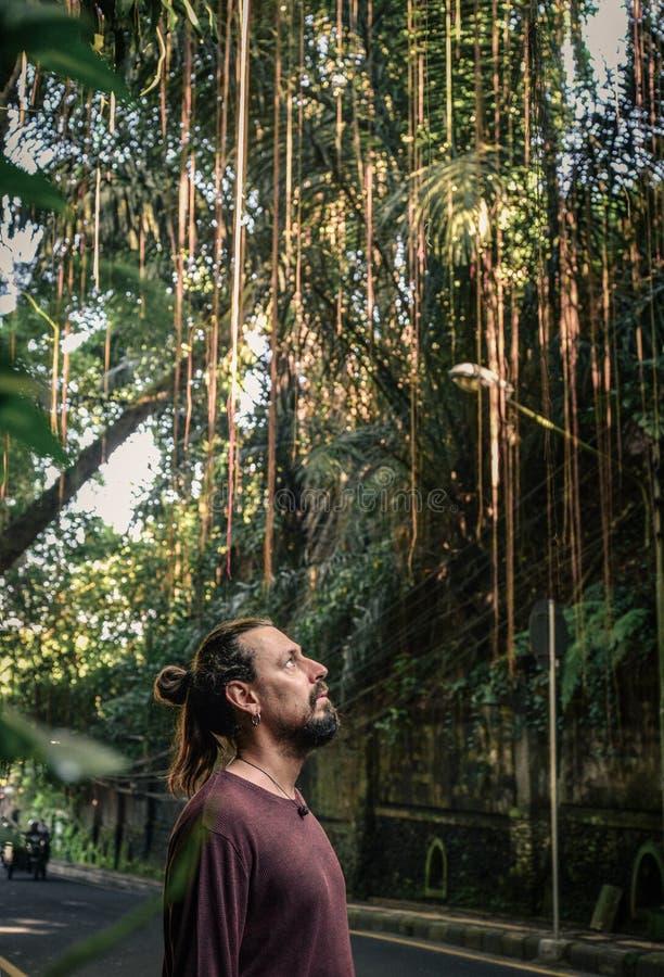 Retrato do homem novo com barba fotos de stock royalty free