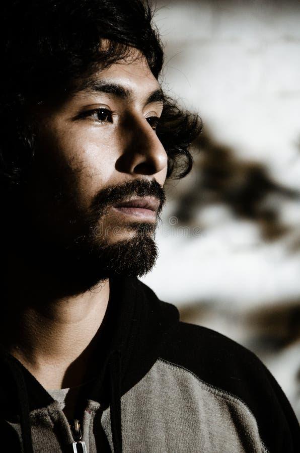 Retrato do homem novo com a camisa vestindo da barba e com sombras das árvores foto de stock royalty free