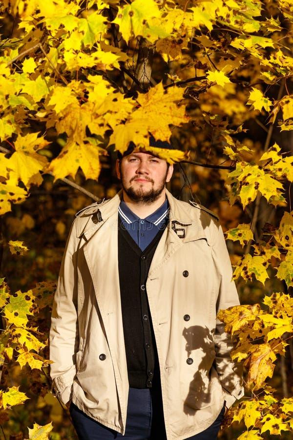 Retrato do homem novo na floresta do outono fotos de stock royalty free