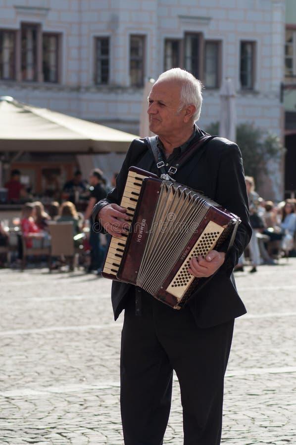 Retrato do homem que joga o acordeão na rua imagem de stock