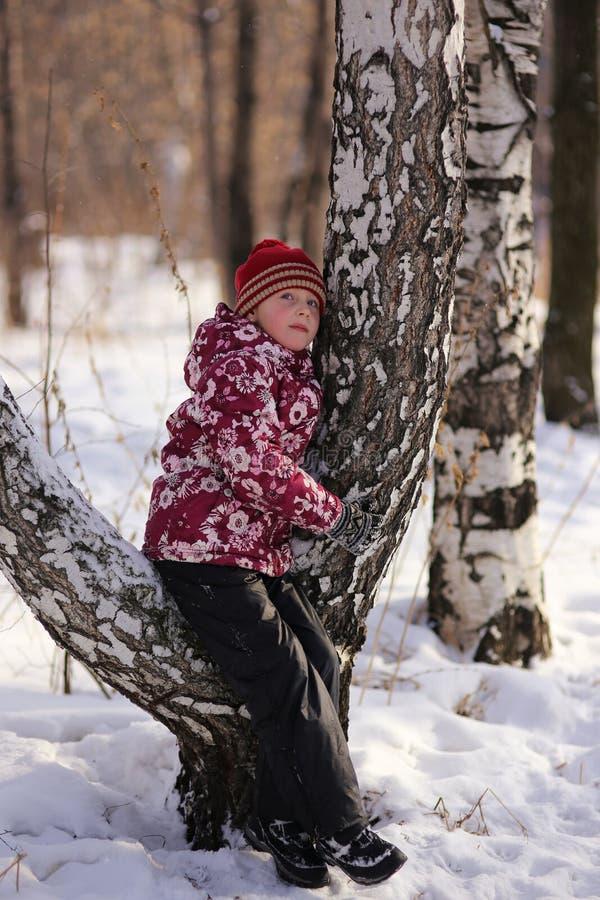 Retrato do inverno de uma menina na floresta fotos de stock