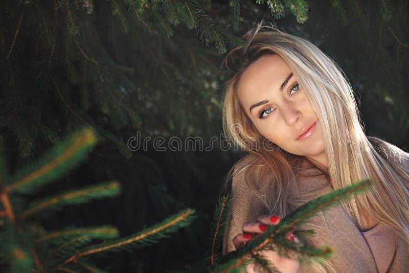 Retrato do inverno de uma mulher bonita e elegante imagem de stock