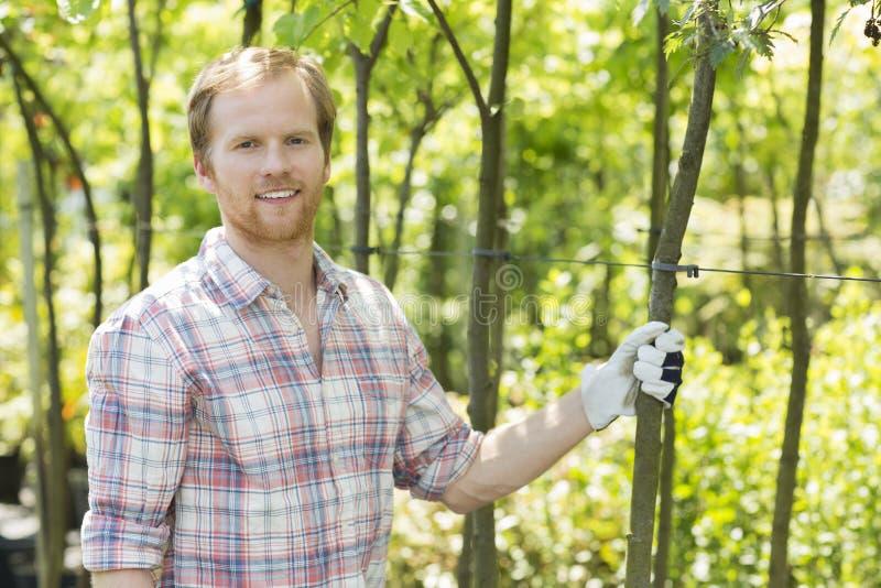 Retrato do jardineiro de sorriso que está no berçário da planta imagem de stock