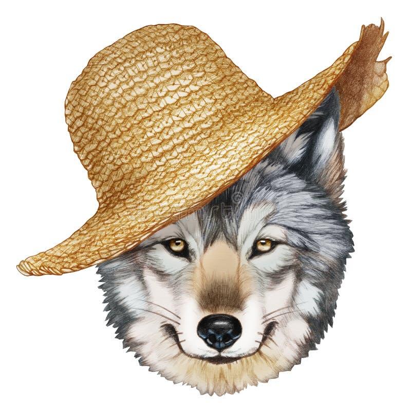 Retrato do lobo com chapéu de palha ilustração royalty free