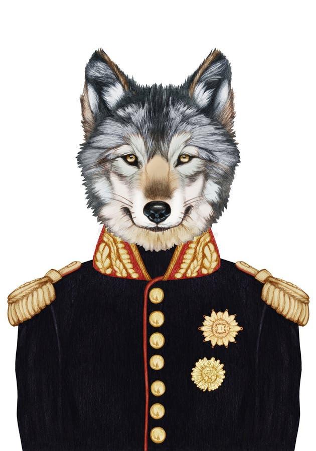 Retrato do lobo no uniforme militar ilustração do vetor