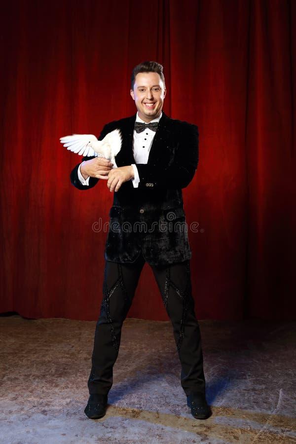 Retrato do mágico com a pomba no circo fotos de stock royalty free