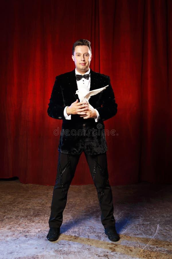 Retrato do mágico com a pomba no circo imagem de stock royalty free