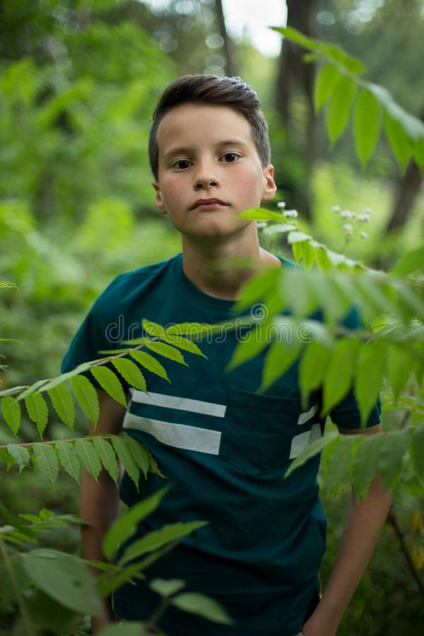 Retrato do menino adolescente bonito na floresta foto de stock royalty free