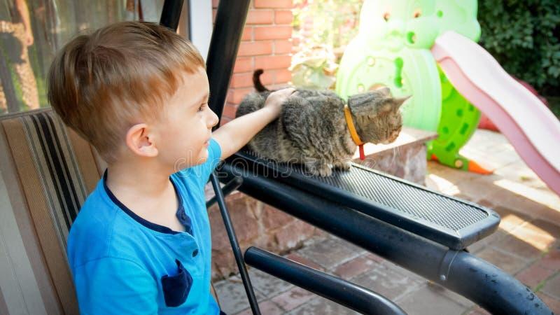 Retrato do menino ador?vel da crian?a com o gato que senta-se no banco do balan?o no jardim do quintal da casa fotografia de stock