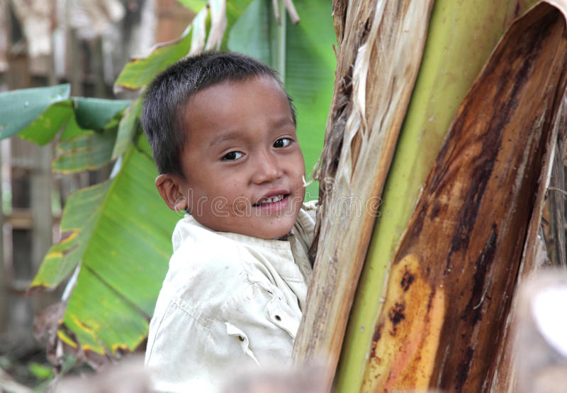 Retrato do menino asiático imagens de stock royalty free