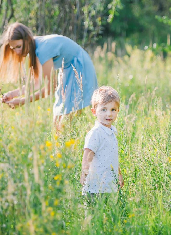 Retrato do menino louro pequeno no prado Sua mãe feliz recolhe flores selvagens em um fundo fotografia de stock