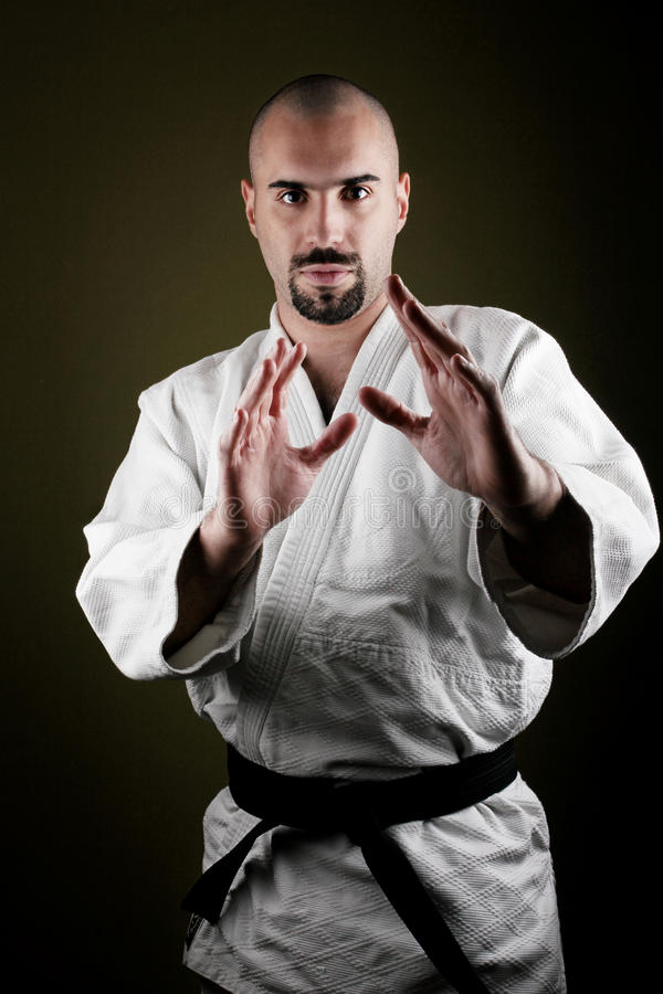 Retrato do mestre perigoso do aikido imagens de stock royalty free