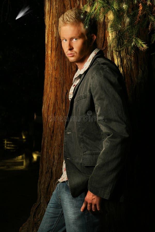 Retrato do modelo masculino novo na floresta imagens de stock