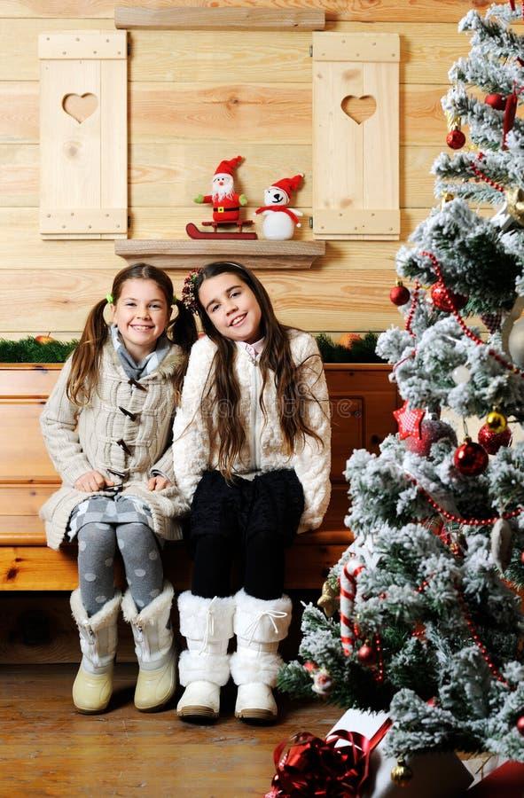 Retrato do Natal foto de stock