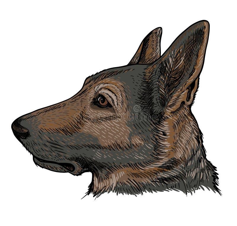 Retrato do pastor alem?o Dog ilustração royalty free