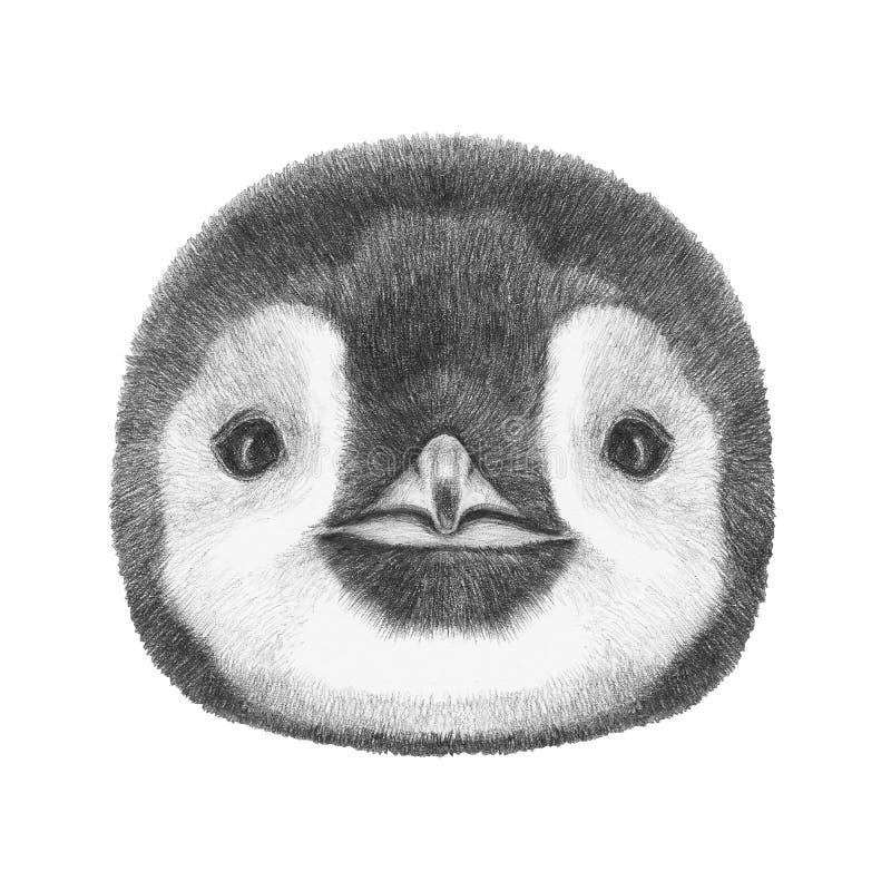 Retrato do pinguim ilustração stock