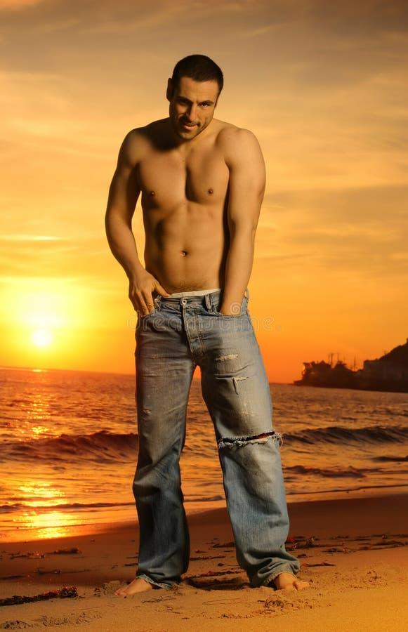 Retrato do por do sol imagens de stock royalty free