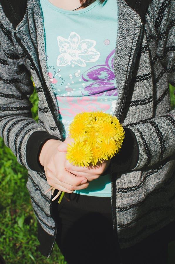 retrato do ramalhete de sorriso da terra arrendada da moça das flores nas mãos Menina com dentes-de-leão amarelos Cara de sorriso fotos de stock royalty free