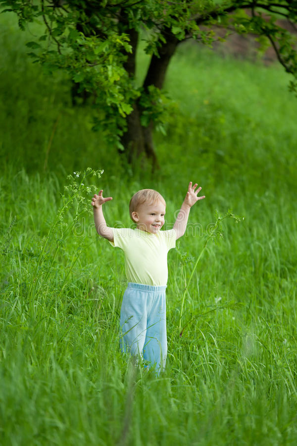 Retrato do rapaz pequeno no prado imagem de stock royalty free