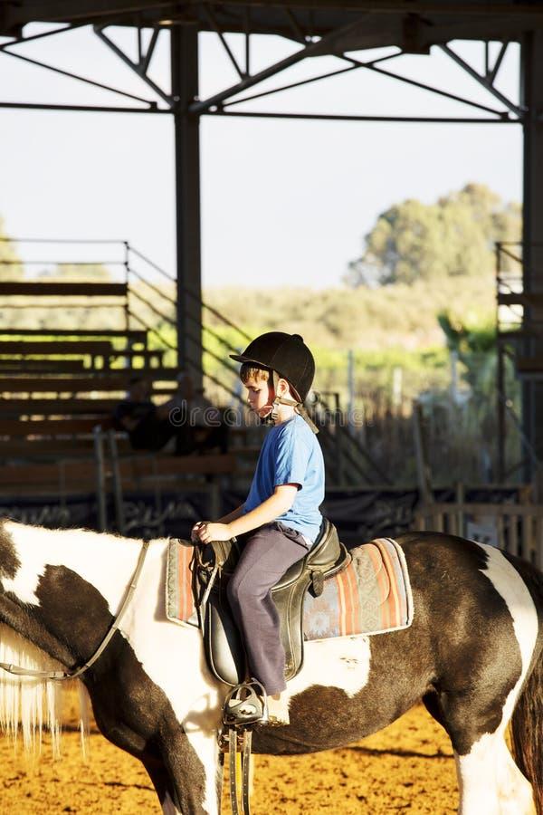 Retrato do rapaz pequeno que monta um cavalo Primeiras lições da equitação fotografia de stock royalty free