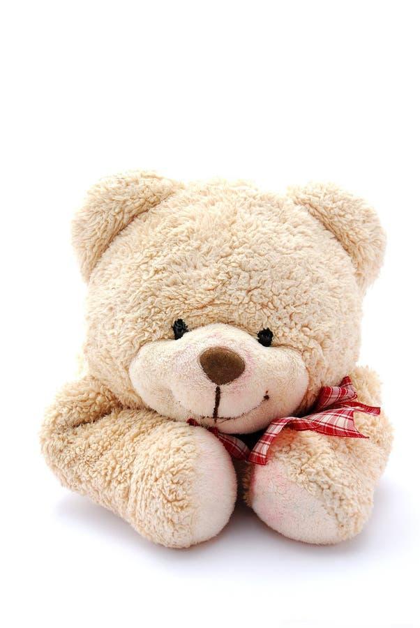Retrato do urso da peluche fotografia de stock