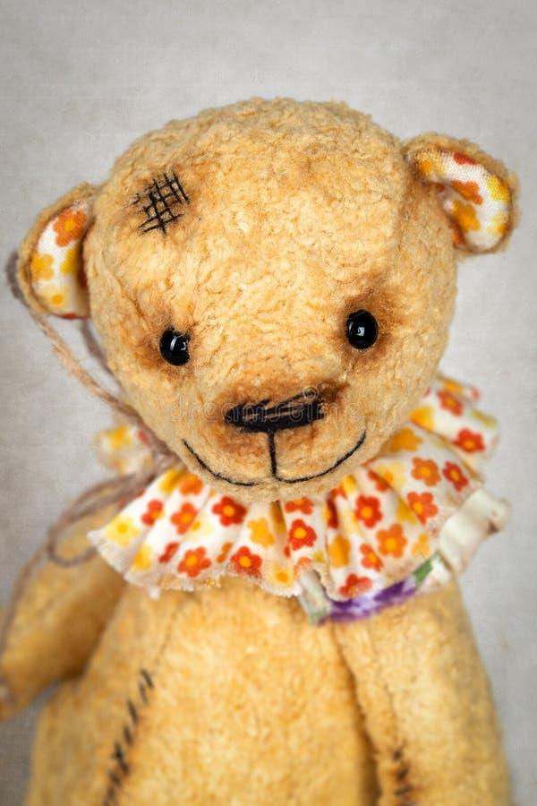 Retrato do urso de peluche antiquado fotografia de stock