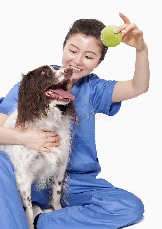 Retrato do veterinário fêmea que guarda uma bola com um cão fotos de stock royalty free