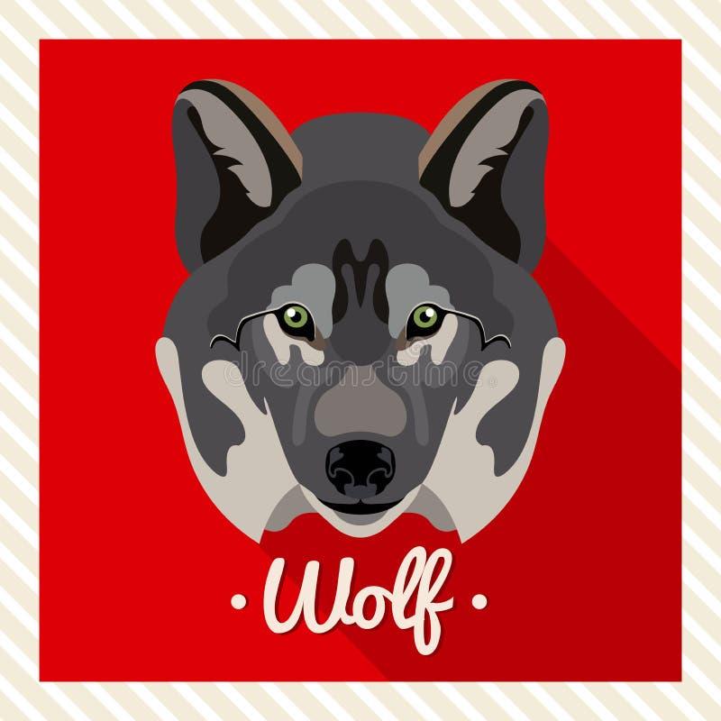 Retrato do vetor de um lobo Retratos simétricos dos animais Ilustração do vetor, cartão, cartaz ícone Cara animal ilustração do vetor