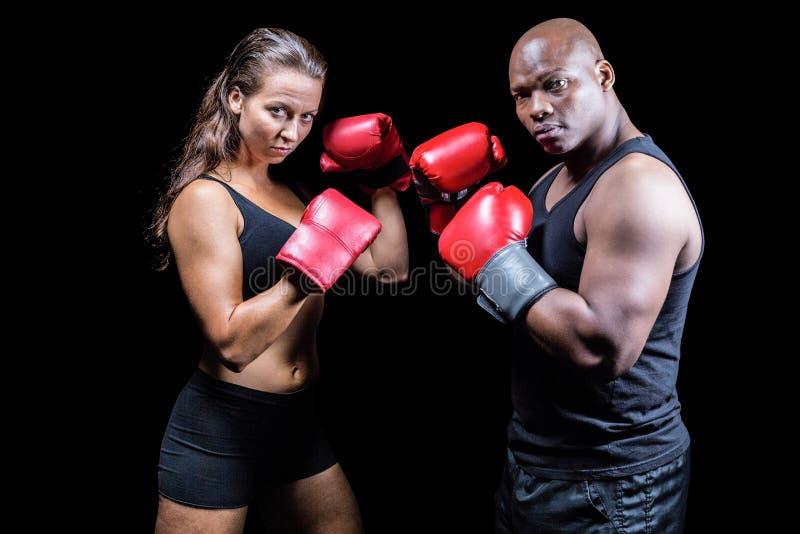 Retrato dos atletas masculinos e fêmeas com posição de combate fotos de stock
