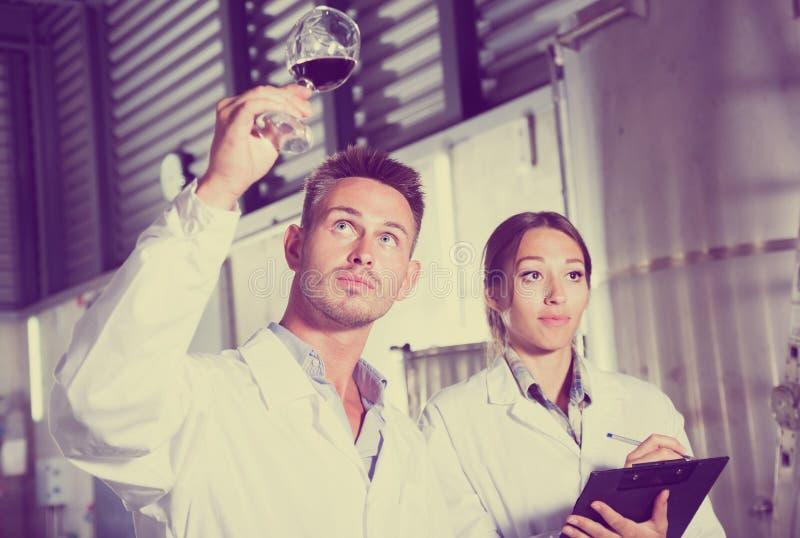 Retrato dos dois peritos alegres que examinam o vinho imagem de stock royalty free