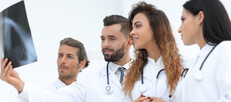 Retrato dos doutores masculinos novos que olham o raio X fotografia de stock royalty free