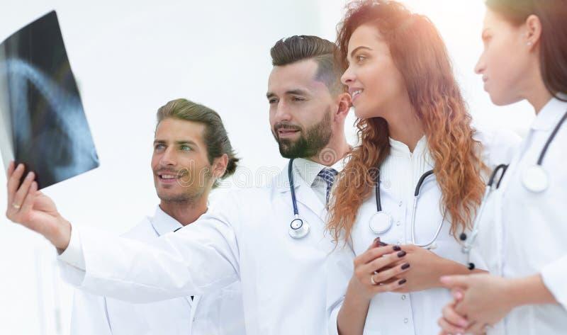 Retrato dos doutores masculinos novos que olham o raio X foto de stock royalty free