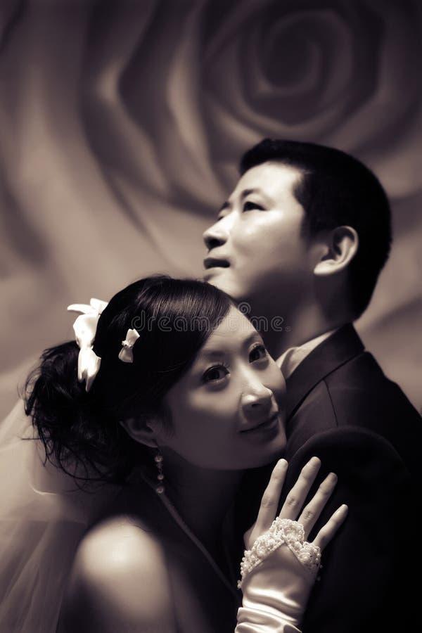 Retrato dos pares do casamento foto de stock