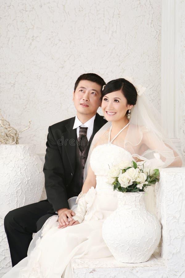 Retrato dos pares do casamento fotos de stock