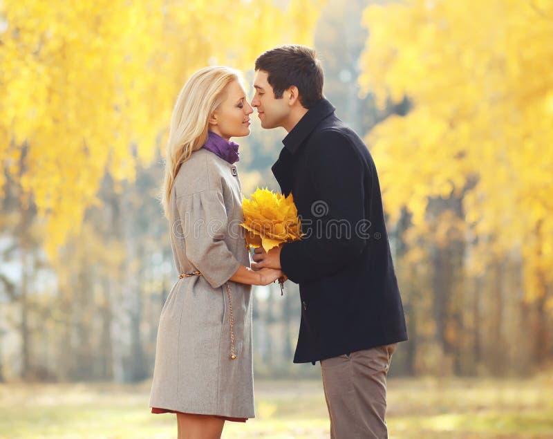 Retrato dos pares loving novos que beijam no outono imagem de stock