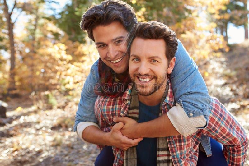 Retrato dos pares masculinos alegres que andam através da floresta da queda imagem de stock