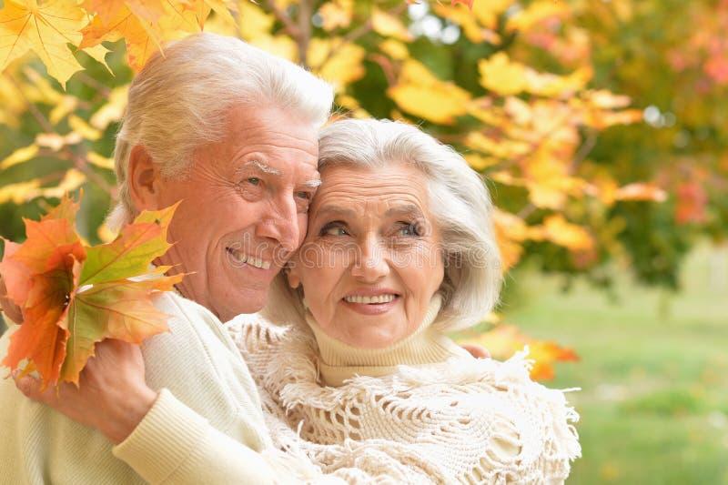 Retrato dos pares superiores bonitos que relaxam no parque imagens de stock royalty free