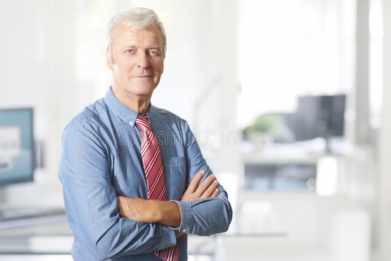 Retrato ejecutivo del alto directivo imagen de archivo